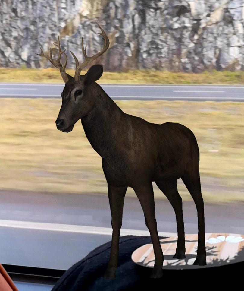 Od skoraj pravih jelenov do oživelega kataloga