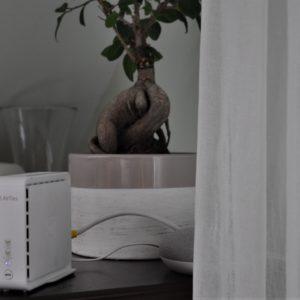 Telemachovo »Mesh« omrežje: Lahko pet evrov mesečno prepodi vse Wi-Fi skrbi?