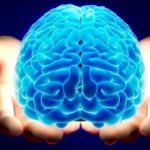 Zakaj se trudimo primerjati računalnik z organom, ki ga imamo v glavi?