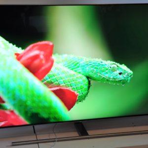 Televizor Samsung Q7FNA: Kdo koga »farba« s ceno?