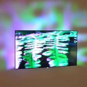 Vsevedno televizijsko oko